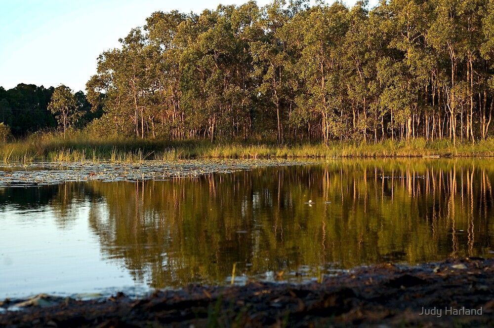 Lake Kurwongbah by J Harland