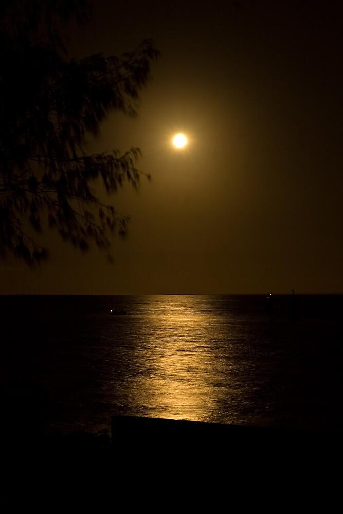 Sandgate Moonlight by Judy Harland