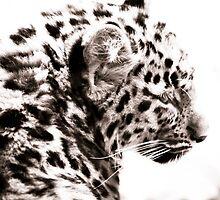 Leopard Cub I by Beth Wold