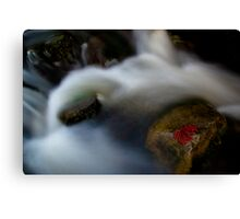 Back on solid ground Canvas Print