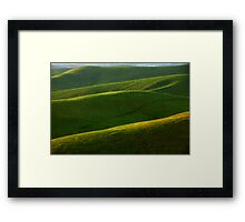 Grazing country Framed Print