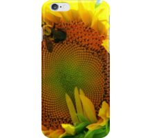 Bumble Bee on Giant Sunflower iPhone Case/Skin