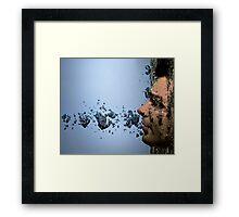 Svein Framed Print