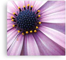 Floral Bouquet Canvas Print