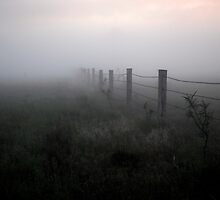 Into the Mist by mattappel