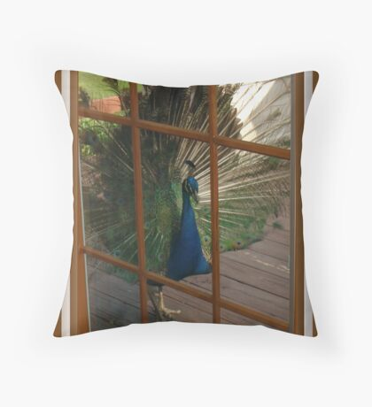 Won`t You Let Me In? Throw Pillow
