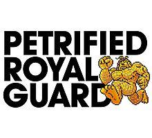 Petrified Royal Guard Photographic Print