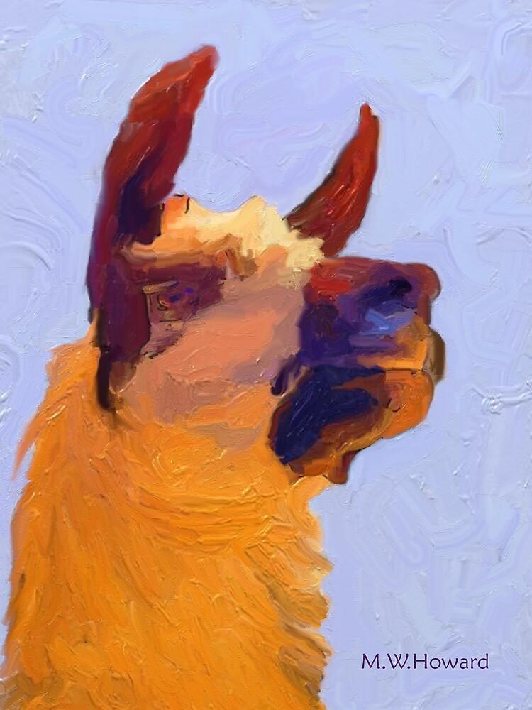llama by Nazareth