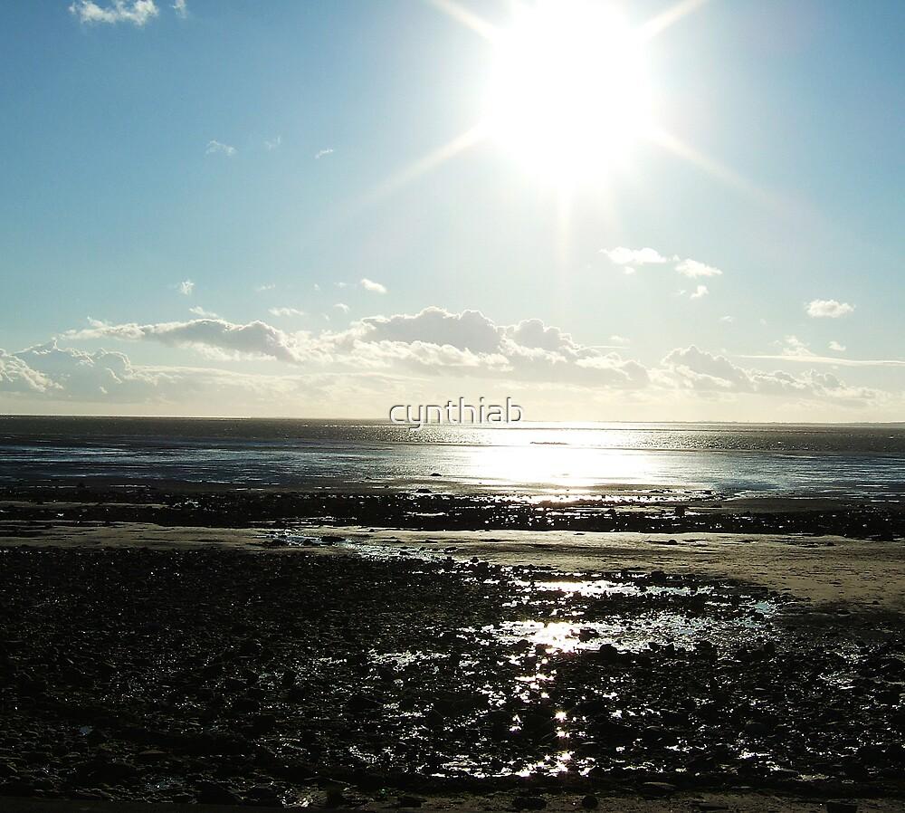 sunshimmer by cynthiab