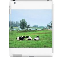 Contented cows... iPad Case/Skin