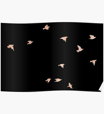 Rose Gold Birds - Fly Free Poster