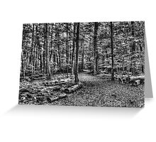 Forest 4 Greeting Card
