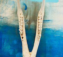 Jawbone by Antaratma Images
