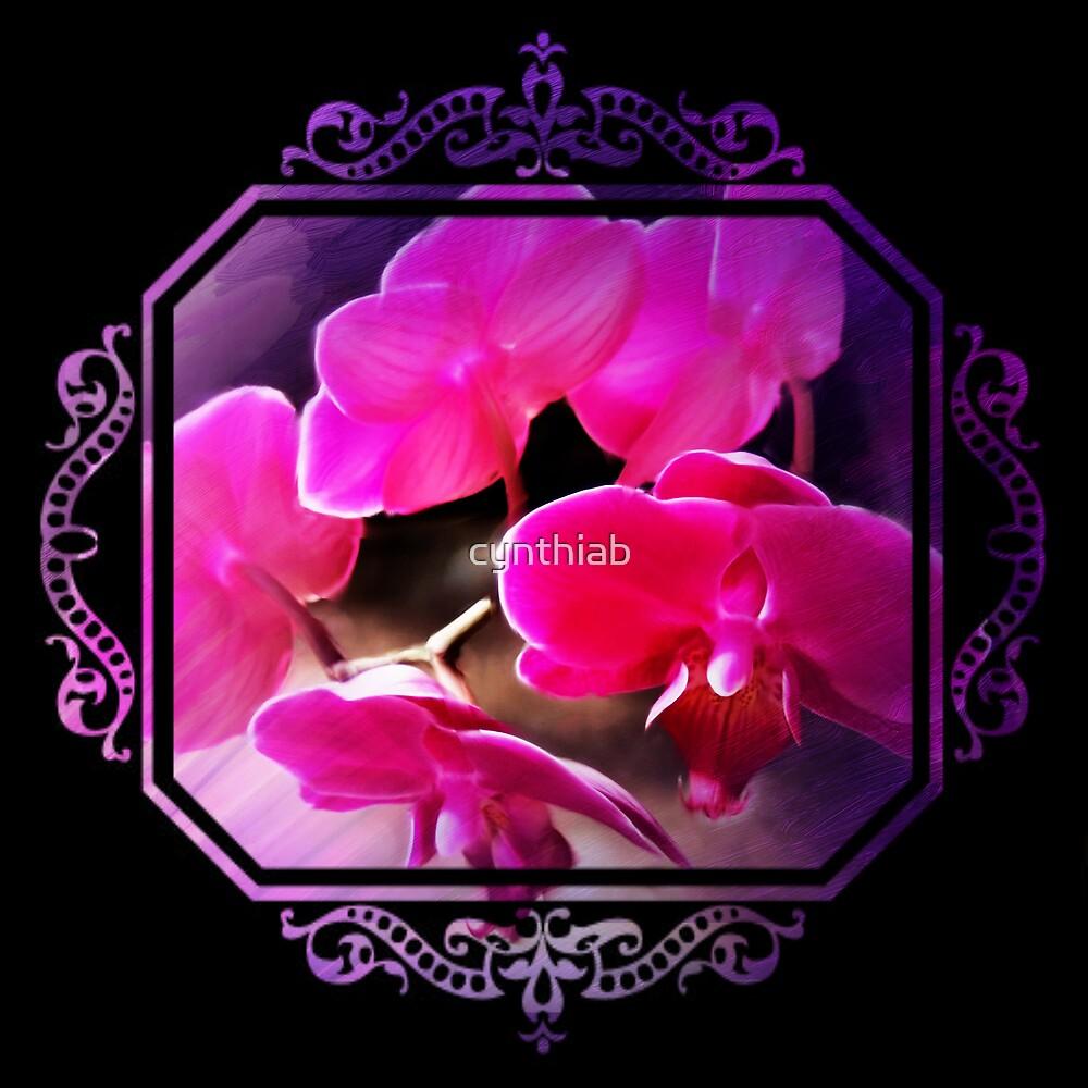 orchid by cynthiab