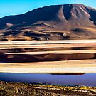 Red Lagoon of  the Solili Desert, Bolivia by Richard Shakenovsky