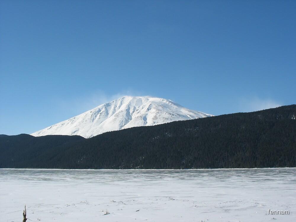 Fairbanks Alaska Magnificent Sight by fennam