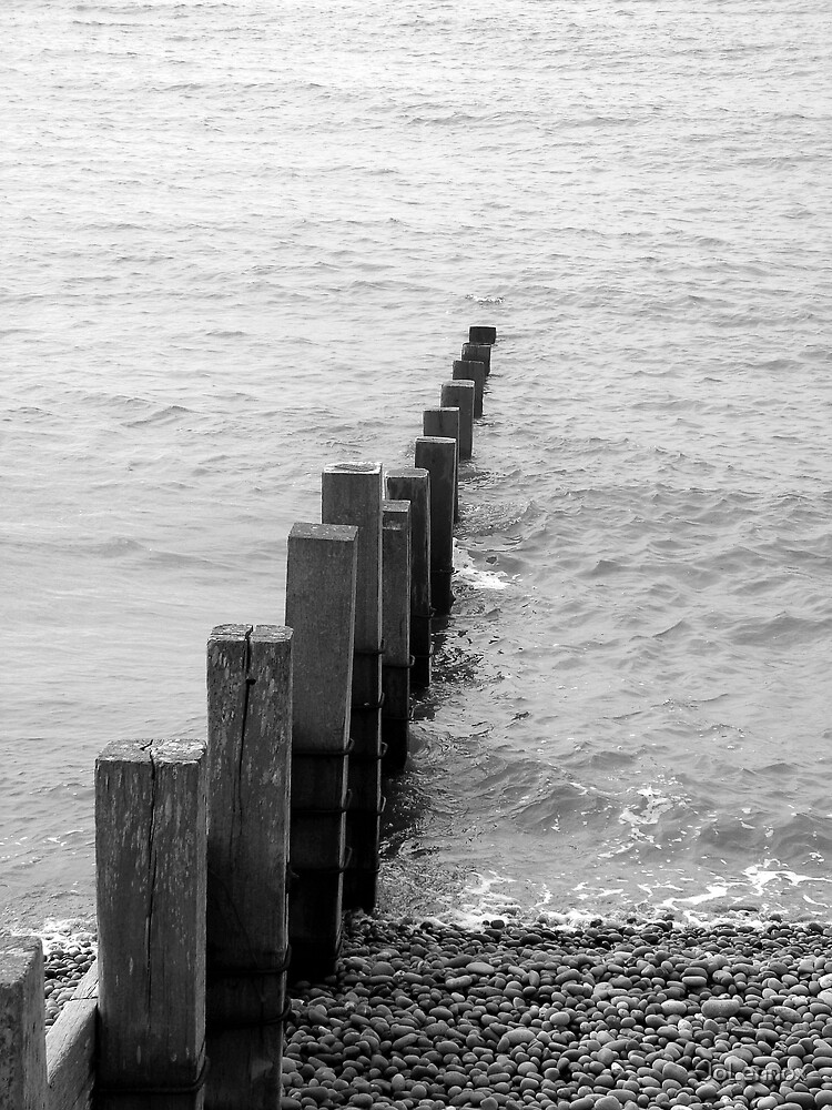Shore Posts by JoLennox