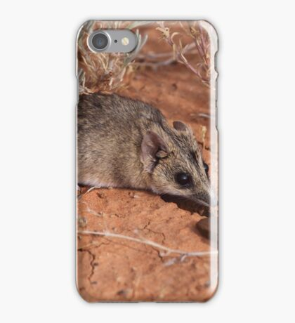 A Fat-tailed Dunnart iPhone Case/Skin