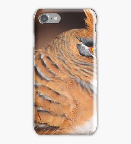 Spinifex Pigeon iPhone Case/Skin