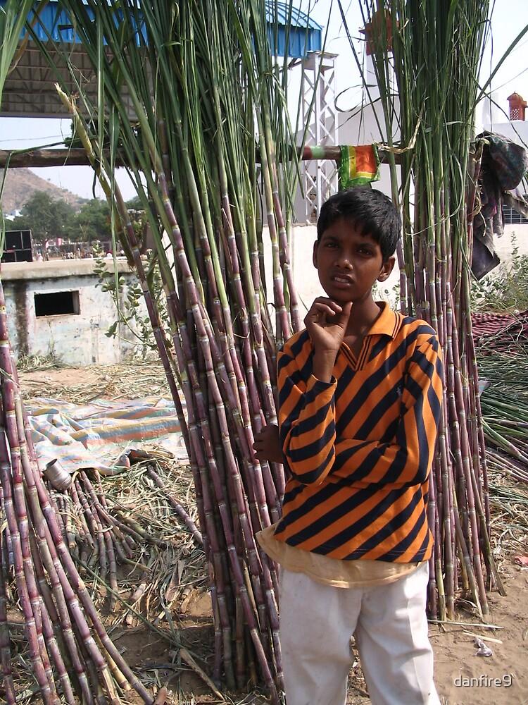 the sugar cane guardian by danfire9