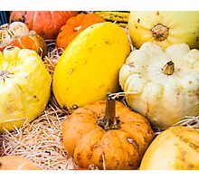 colorful autumn pumpkins on the market Photographic Print