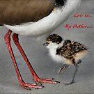 Love Is.... by Kim Roper