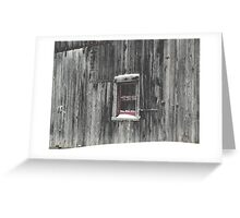 Barn Storming Greeting Card