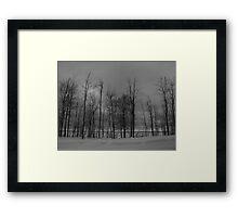 Lake Superior Shoreline Framed Print