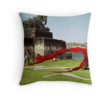 The Material World Throw Pillow