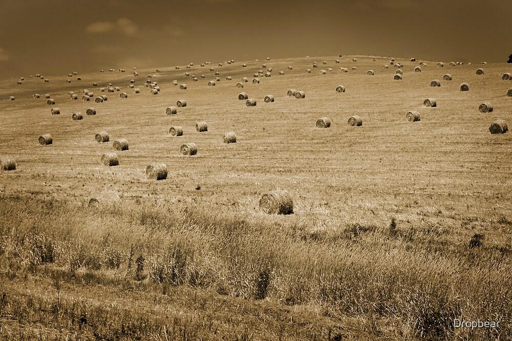 Haystacks by Dropbear