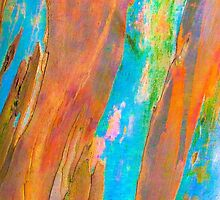 eucalyptus abstract by terezadelpilar~ art & architecture