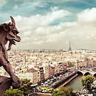 Paris - Gargoyle's Eye View by Vivienne Gucwa