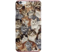 All The Kitties iPhone Case/Skin