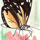 Flutter By by art4friends