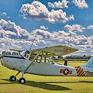 Cessna O-1E Bird Dog 24550/GP G-PDOG by Colin Smedley
