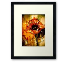 Quiet Things... Framed Print