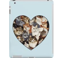 All The Kitties iPad Case/Skin