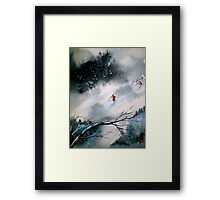 Past The Plunge.. Framed Print