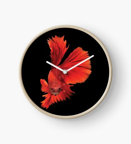 Siamese Figthing Fish Red Clock