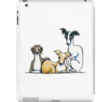 Italian Greyhound Trio iPad Case/Skin