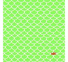 Fish scales green Photographic Print