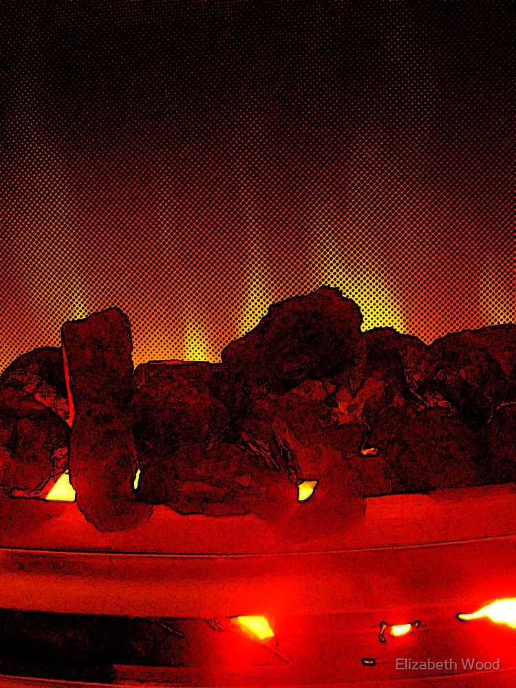 Fire by Elizabeth Wood