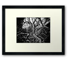 beneath clouds and sky [no. 2] Framed Print