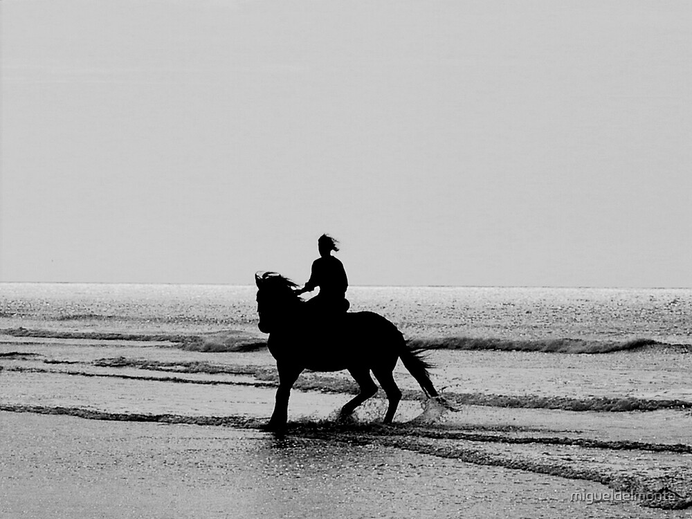 Rider on the shore by migueldelmonte