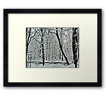 God Painting The Forest With Snow Framed Print