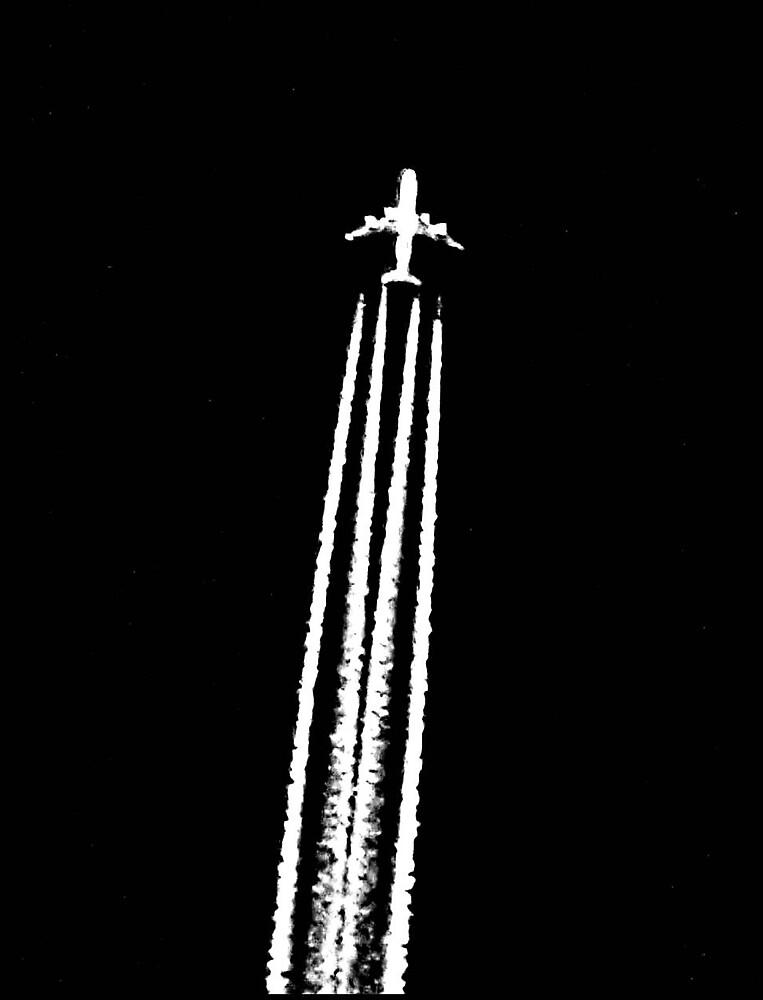 Plane 2 by Tommy Seibold
