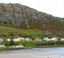Stanley and Circular Head from the South West by mick8585