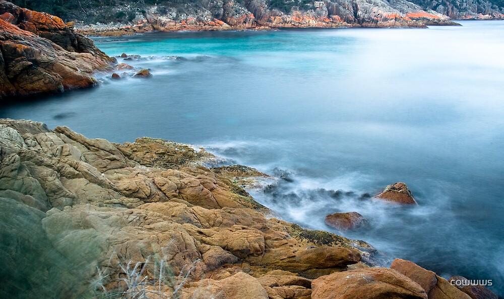 Tasmanian Coastline 2 by cowwws