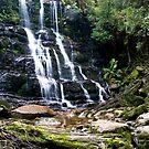 Nelson Falls 2, Tasmania by cowwws