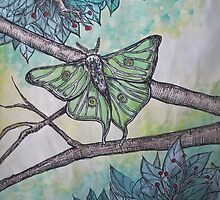 Luna Moth by Katelyn Ratajczak